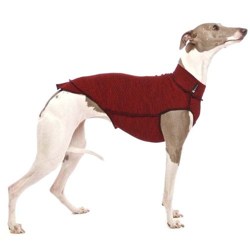 Quinto Unterziehshirt SOFA Dog Wear