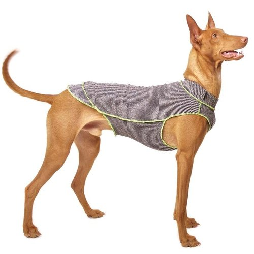 Quinto Forte Thermo-Unterwäsche SOFA Dog Wear