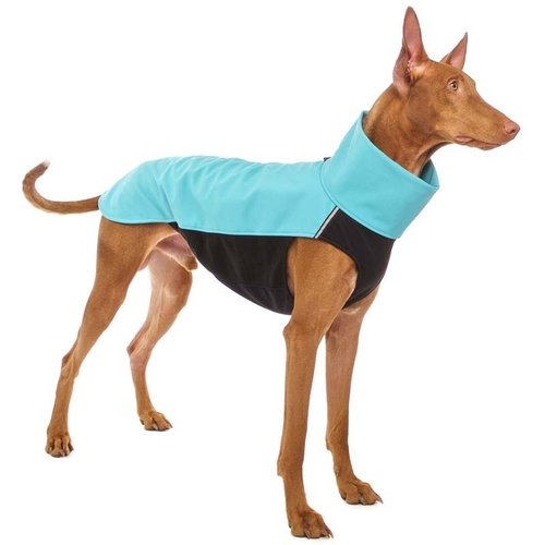 Hachico 02 Softshell Sport Jacke SOFA Dog Wear